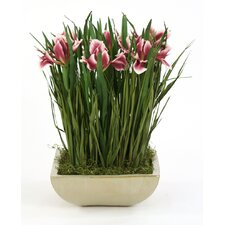 <strong>Distinctive Designs</strong> Garden Patch of Silk Plum Dwarf Iris Grass in Rectangular Planter