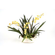 <strong>Distinctive Designs</strong> Silk Orchids with Fern and Pods in Ceramic Oval Planter