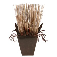 Dried Greenery Neutral Mix of Reeds and Cones Floor Plant in Decorative Vase