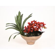 Silk Vanda Orchid in Leaf Bowl