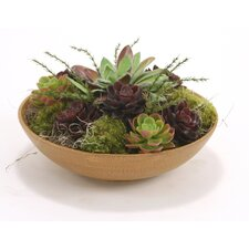 Mixed Faux Succulents Floor Plant in Planter