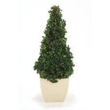 <strong>Distinctive Designs</strong> Silk Boxwood Cone Topiary in Planter