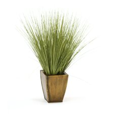 Faux Basil Grass in Square Tapered Planter