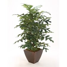 Silk Fishtail Palm Floor Plant in Metal Contempo Planter