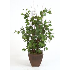 <strong>Distinctive Designs</strong> Silk Elm Floor Plant in Pot