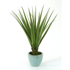 <strong>Distinctive Designs</strong> Silk Pandanus Floor Plant in Pot