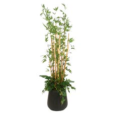 "90"" Bamboo Thicket in Small Round Outdoor Glazed Fiberglass Planter"