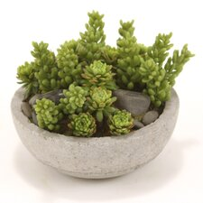 Faux Mixed Succulents and Stones Floor Plant in Pot
