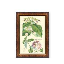 Framed Painting Print