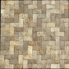 "12"" x 12"" Coconut Tile"