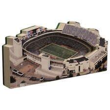 NFL Regular Stadium and Display Case