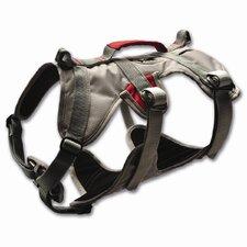 DoubleBack™ Dog Harness