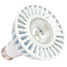 13W 120-Volt (2700K) LED Light Bulb