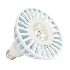 17W 120-Volt (3000K) LED Light Bulb