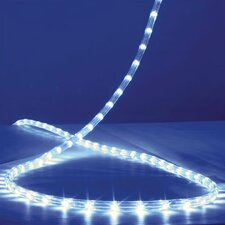 White LED Flexbrite
