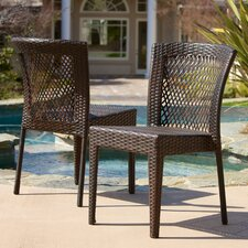 Pisa Outdoor Wicker Chairs (Set of 2) (Set of 2)