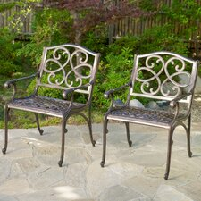 Nelson Cast Outdoor Chairs (Set of 2) (Set of 2)