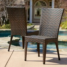 Edward Outdoor Wicker Chairs (Set of 2) (Set of 2)
