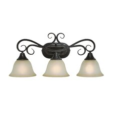 Torrey 3 Light Bath Vanity Light
