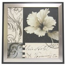 Soft Floral I Framed Graphic Art