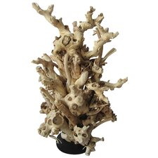 Mulberry Root Free Form Statue