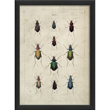 <strong>Blueprint Artwork</strong> Beetles Framed Art