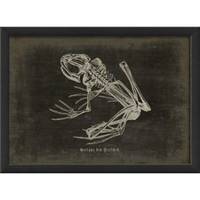 <strong>Blueprint Artwork</strong> Frog Framed Art