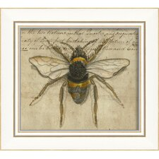 Bumble Bee Framed Graphic Art