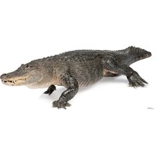 American Alligator Cardboard Stand-Up