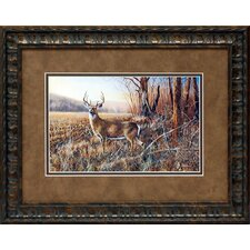 Bluff Country Buck Framed Art