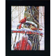 Red Sled with Cardinals Framed Painting Print