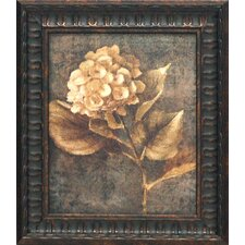 Antique Hydrangea II Framed Painting Print