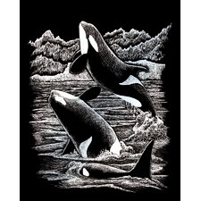 Orca Whales Art Engraving