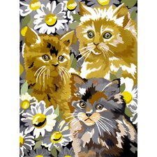 Painting by Numbers Small Kitten/Daisy Junior Set
