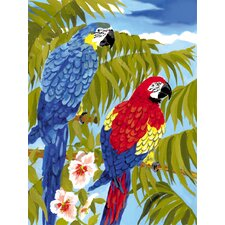 Painting by Numbers Small Parrots Junior  Set