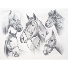 <strong>Reeves</strong> Sketching Pencil By Numbers Advanced Horse Montage Sketching Pencil