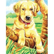 Colored Pencil By Numbers Intermediate Medium Labrador Colored Pencil