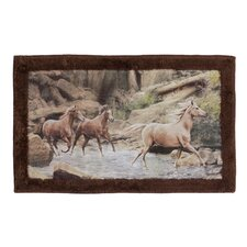 Horse Canyon Multi Color Rug