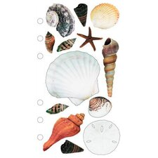 Sticko Photo Seashells Sticker