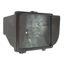 1 Light Flood Fixture