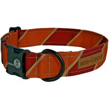 Eco Lucks Ivy League Varsity Dog Collar