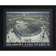Meadowlands Stadium Photographic Print
