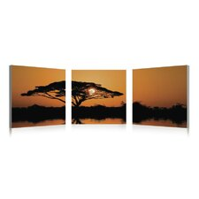 Serengeti Wall Art (Set of 3)