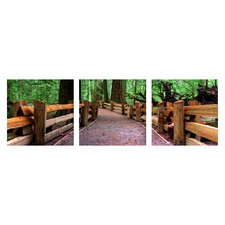 Cathedral Grove Wall Art (Set of 3)