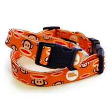 <strong>26 Bars & A Band</strong> Paul Frank Signature Julius Orange Dog Collar