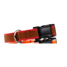 Stripe Hype Dog Collar