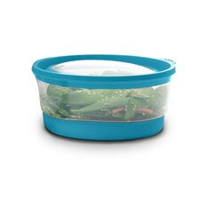 <strong>Clear Choice Housewares</strong> Platinum Four Cup Food Storage Container