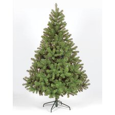 Colorado Spruce Chirstmas Tree