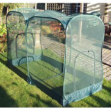 Pop-Up Giant Fruit Medium Cage