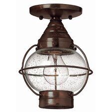 <strong>Hinkley</strong> Cape Cod 1 Light Semi Flush Mount